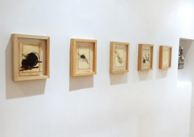 'Silent Observers' exhibition-view